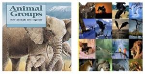 Словарь дикой природы